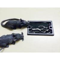 Refil Adesivo para Captura de Camundongos